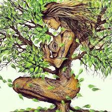 Wij zijn de aarde! Meditatiemiddag in Bergen NH @ De Berkeley